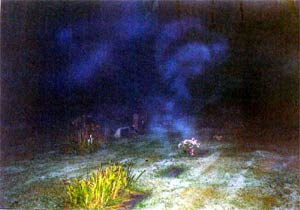 Ghost picture - Chesterland Cemetery, Chesterland, Ohio.