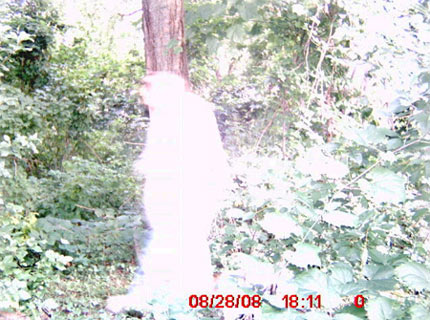 Ghost picture in Wayland, New York